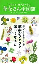子どもと一緒に見つける草花さんぽ図鑑