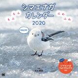 もふもふふわふわ シマエナガ カレンダー(2020) ([カレンダー])