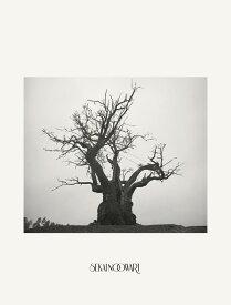 SEKAI NO OWARI 2010-2019 (完全生産限定プレミアムBOX 2CD+DVD+ヒストリーブック+スペシャルコンテンツ) [ SEKAI NO OWARI ]