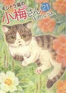 キジトラ猫の小梅さん 21
