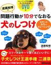 遠藤和博の問題行動が10分でなおる犬のしつけスマートカラートレーニング [ 遠藤和博 ]