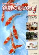 錦鯉の飼い方