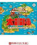 """【先着特典】Live&Travel DVD 「ウカスカジーの大冒険 〜TOUR """"WE ARE NOT AFRAID !!""""〜」(ミファンダステッカー…"""