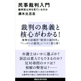 民事裁判入門 (講談社現代新書)