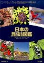 日本の昆虫 生態図鑑 [ 今井初太郎 ]