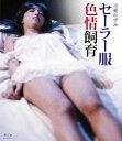 セーラー服色情飼育【Blu-ray】 [ 可愛かずみ ]