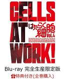 【全巻購入特典対象】はたらく細胞 4(完全生産限定版)【Blu-ray】