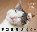 【卓上】カレンダーネコまる週めくり(2017)