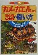 カメ・カエルなど両生類・は虫類の飼い方