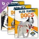 Canine Athletes (Set)