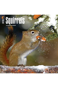 2018SquirrelsWallCalendarCAL2018-SQUIRRELSWALLCAL[IncBrowntroutPublishers]