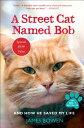 A Street Cat Named Bob: And How He Saved My Life STREET CAT NAMED BOB [ James Bowen ]