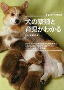 【バーゲン本】犬の繁殖と育児がわかるー新しい犬の解説書