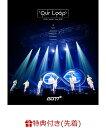 """【先着特典】GOT7 Japan Tour 2019 """"Our Loop"""" (ライブフォトポストカード 全7枚セット) [ GOT7 ]"""