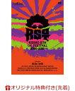 【楽天ブックス限定先着特典】RISING SUN OT FESTIVAL 2000-2019(完全生産限定盤)(マグネットシート) [ 奥田民生 ]