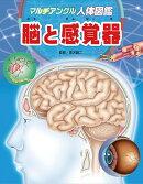 マルチアングル人体図鑑 脳と感覚器