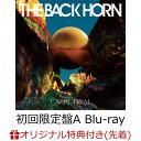 【楽天ブックス限定先着特典】カルペ・ディエム (初回限定盤A CD+Blu-ray) (THE BACK HORNオリジナルステッカー (E t…
