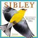 Sibley Calendar: The Birder's Year