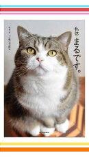 かわいいネコ画像がいっぱい特集 4冊セット