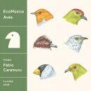 EcoMusica | Aves