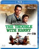 ハリーの災難【Blu-ray】