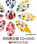 【先着特典】僕のこと (初回限定盤 CD+DVD) (B2告知ポスター付き)