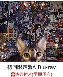 【早期予約特典】CATALOGUE 1987-2016 (初回限定盤A 4CD+Blu-ray) (カレンダー付き)