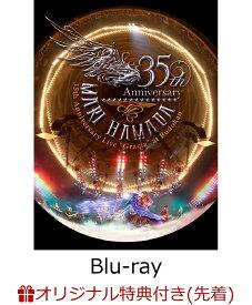 """【楽天ブックス限定先着特典】Mari Hamada 35th Anniversary Live""""Gracia""""at Budokan(ステッカー付き)【Blu-ray】 [ 浜田麻里 ]"""
