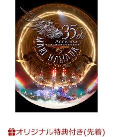 """【楽天ブックス限定先着特典】Mari Hamada 35th Anniversary Live""""Gracia""""at Budokan(ステッカー付き) [ 浜田麻里 ]"""