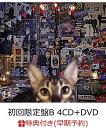 【早期予約特典】CATALOGUE 1987-2016 (初回限定盤B 4CD+DVD) (カレンダー付き) [ BUCK-TICK ]