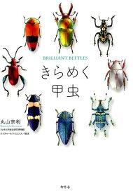 きらめく甲虫 [ 丸山宗利 ]