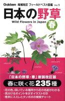 日本の野草(春)増補改訂