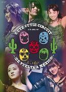 ℃-ute Cutie Circuit 〜!De vuelta a Mexico!〜