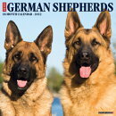 Just German Shepherds 2022 Wall Calendar (Dog Breed)