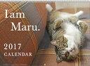 まるちゃん 2017年 カレンダー