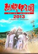 熱闘甲子園 2013 〜第95回記念大会 48試合完全収録〜【Blu-ray】