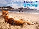 岩合光昭世界の猫カレンダー(2019)