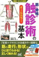 筋と骨格の触診術の基本