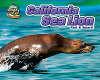 California_Sea_Lion:_Fast_&_Sm