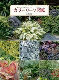 カラーリーフ図鑑 明度と高さの組み合わせで庭をグレードアップする [ 山本 規詔 ]