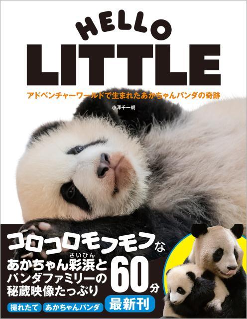 アドベンチャーワールドで生まれたあかちゃんパンダの奇跡 HELLO LITTLE 〈DVD付〉 [ 小澤千一朗 ]
