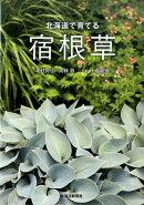 北海道で育てる宿根草
