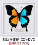 【先着特典】音色 / Break it down (初回限定盤 CD+DVD) (FLOW 特製ステッカー付き)