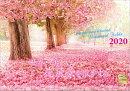 世界一美しい花風景を散歩する 2020年 カレンダー 壁掛け