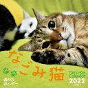 週めくりカレンダーなごみ猫カレンダー(2022) ([カレンダー])