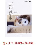 【楽天ブックス限定先着特典】ネコメンタリー 猫も、杓子も。(ポストカード6枚セット付き)