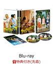 【先着特典】タロウのバカ(オリジナル大判ポストカードセット4枚組&A4クリアファイル付き)【Blu-ray】 [ YOSHI ]