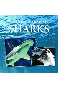 The_Little_Book_of_Sharks