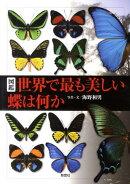 図鑑世界で最も美しい蝶は何か