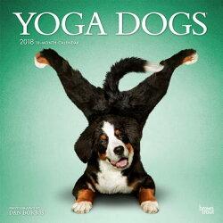 2018 Yoga Dogs Wall Calendar